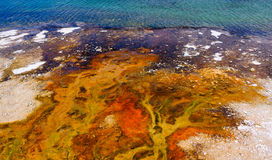 Yellowstone Lake of Yellowstone Park Stock Image