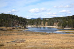 Yellowstone Landscape Royalty Free Stock Image