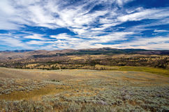 Yellowstone Landscape Royalty Free Stock Image