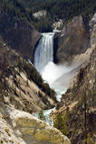 Yellowstone lower falls Stock Photo