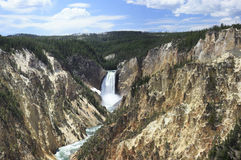 Yellowstone Lower Falls panorama 1 Royalty Free Stock Photography