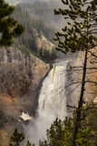 Yellowstone Lower Waterfalls in the mist at Yellowstone National Park, Wyoming Stock Photography