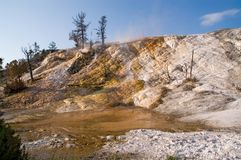 Free Yellowstone, Mammoth Hot Springs Terraces Stock Image - 11489411