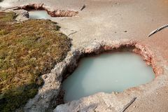 yellowstone Melkachtig thermisch meer royalty-vrije stock afbeelding