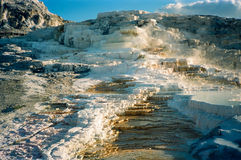 Yellowstone Minerva Terrace. The Minerva Terrace in Mammoth Hot Springs, Yellowstone, USA royalty free stock photos