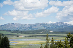 Yellowstone Mountains. These were some mountains at Yellowstone National Park. I decided this spot was good to take a landscape due to the large field and river royalty free stock images