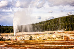Yellowstone Nationaal Park Stock Fotografie