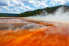 Yellowstone Nationaal Park Royalty-vrije Stock Foto