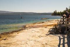 Yellowstone Nationaal Park De kust van het Yellowstonemeer Wyoming, de V.S. Royalty-vrije Stock Afbeelding