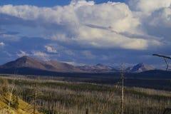 Yellowstone Nationaal Park de V.S. en de geothermische lentes stock afbeelding
