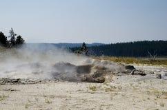 Yellowstone Nationaal Park geiser Royalty-vrije Stock Foto's