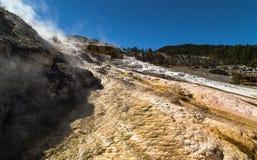 Yellowstone Nationaal park, Minerva Terrace in de Mammoet Hete Lentes Stock Afbeeldingen