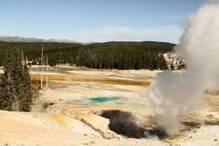 Yellowstone Nationaal park, Norris-geiserbassin, WY, de V.S. Stock Afbeeldingen