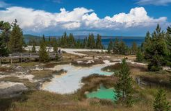 Yellowstone Nationaal Park, WY stock foto's