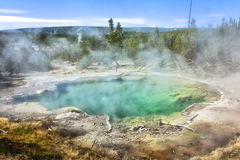 Yellowstone National Park. Sulphur Pool in Yellowstone National Park Wyoming Royalty Free Stock Photography
