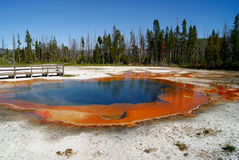 Yellowstone National Park Stock Images
