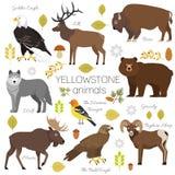 Yellowstone National Park animals set  Royalty Free Stock Photo
