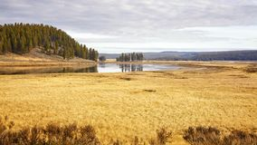 Yellowstone National Park in autumn, Wyoming, USA. Yellowstone National Park in autumnal warm colors, Wyoming, USA royalty free stock photo