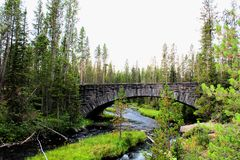 Free Yellowstone National Park Beautiful Bridge With Rocks And Moss And Woodlands Gorgeous Colors Royalty Free Stock Image - 131249046