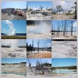 Yellowstone national park collage Stock Photography