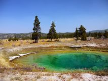 Geysers Hot Springs Yellowstone National Park Wyoming Royalty Free Stock Photo