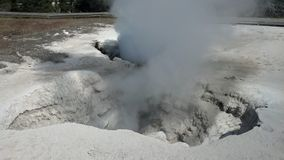 Yellowstone National Park Geyser steaming Royalty Free Stock Photography