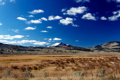 Yellowstone National Park: Hayden Valley. With mountains Royalty Free Stock Images