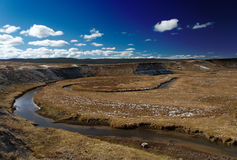 Yellowstone National Park: Hayden Valley. With blue skies Royalty Free Stock Photography