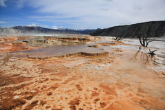 Yellowstone national Park 3. Mammoth Hot Springs in Yellowstone national Park royalty free stock photo