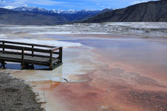 Yellowstone national Park 6. Mammoth Hot Springs in Yellowstone national Park Royalty Free Stock Photo