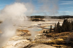 Yellowstone National park,Norris geyser Basin,WY,USA. Yellowstone National park,Norris geyser Basin, white steam,blue sky,WY,USA Stock Images