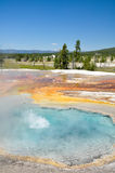 Yellowstone National Park. One of Yellowstone's colorful hot springs Royalty Free Stock Photography