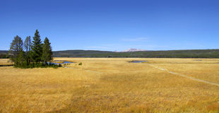 Yellowstone national park Stock Photography