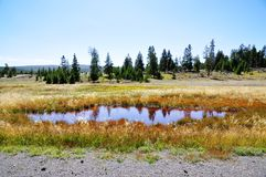 Yellowstone National Park Stock Image