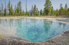 Yellowstone National Park pure hot water Royalty Free Stock Photo