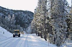 Winter at Yellowstone National Park. Yellowstone National Park snow coaches taking first guests into the park. Snow covered road, pine trees and mountains stock photo