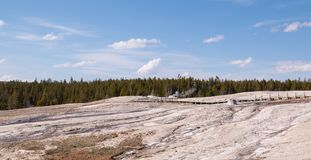 Yellowstone national park at spring time royalty free stock photo