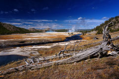 Yellowstone National Park in the state of Wyoming, USA Stock Photos