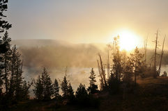 Yellowstone National Park. Sunrise over a misty lake in Yellowstone National Park Stock Photo