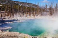 Yellowstone Stock Photo