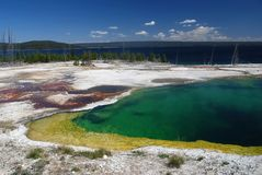 Yellowstone National Park, USA. Abyss pool in West Thumb Geyser Basin, Yellowstone National Park,Wyoming , USA Stock Photos