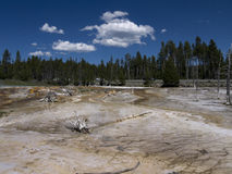 Yellowstone National Park in the USA Royalty Free Stock Images