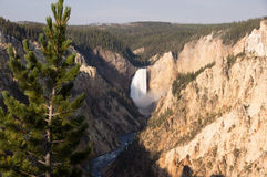 Yellowstone National Park, USA Stock Photos