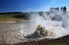 Yellowstone National Park, USA Royalty Free Stock Images