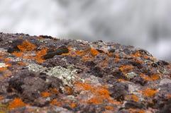 Yellowstone National Park, Utah, USA Stock Images