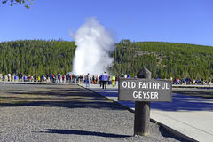 Yellowstone National Park, Wyoming Stock Photography