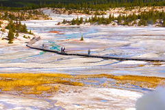 Yellowstone National Park, Wyoming, United States Stock Images