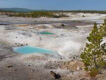 Yellowstone National Park, Wyoming, United States. Geysers and hot springs in Yellowstone National Park, Wyoming. United States stock photography