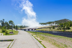 Yellowstone National Park Royalty Free Stock Photography