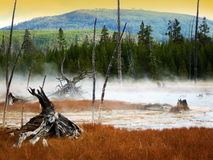 Yellowstone National Park, Wyoming, USA Stock Images
